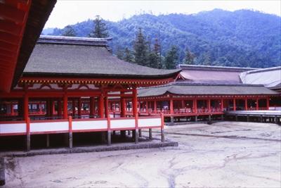 2003_itukushima_004.jpg