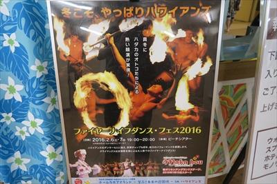 2015_hawaii_12_31_022.jpg
