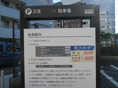 2016_saru_sima001.jpg
